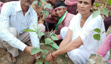 कालपी-प्राथमिक विद्यालय में स्वतंत्रता दिवस पर किया गया वृक्षारोपण 1